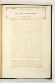 "No. 433: Cotton ""Soojnee"" or counterpane (quilted)."