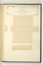 No. 479: Cotton.
